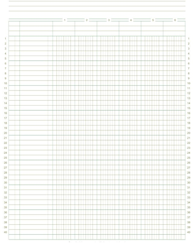 "8.5"" X 11"" - 6 Columns by 40 Rows Ledger Papers"