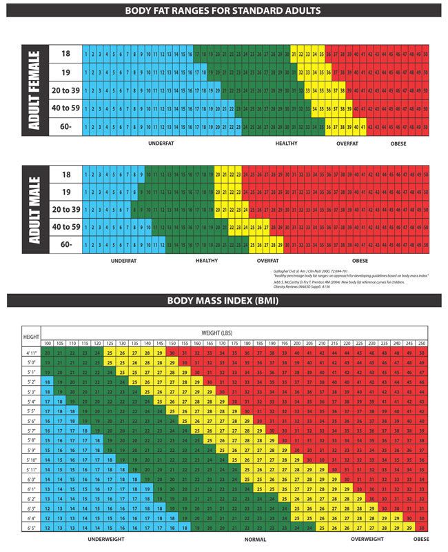 BMI fat weight Chart