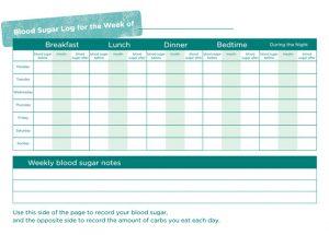 Blood Sugar Log Templates