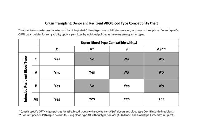 Blood Type Donantion Chart