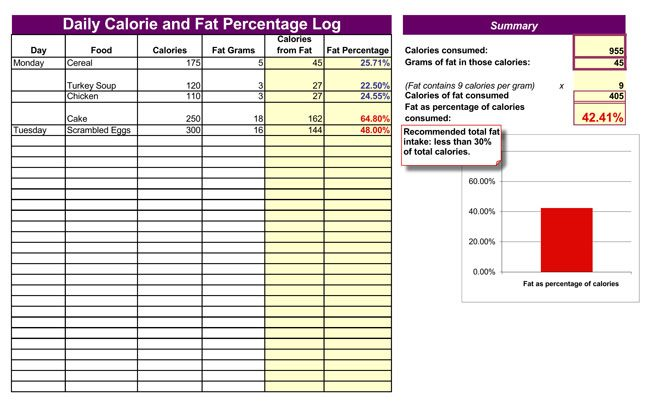 Daily Calories and Fat Log Template for Excel