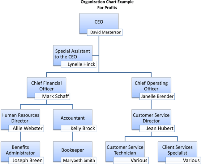 Non-Profit Organizational Chart - 5 Best Samples
