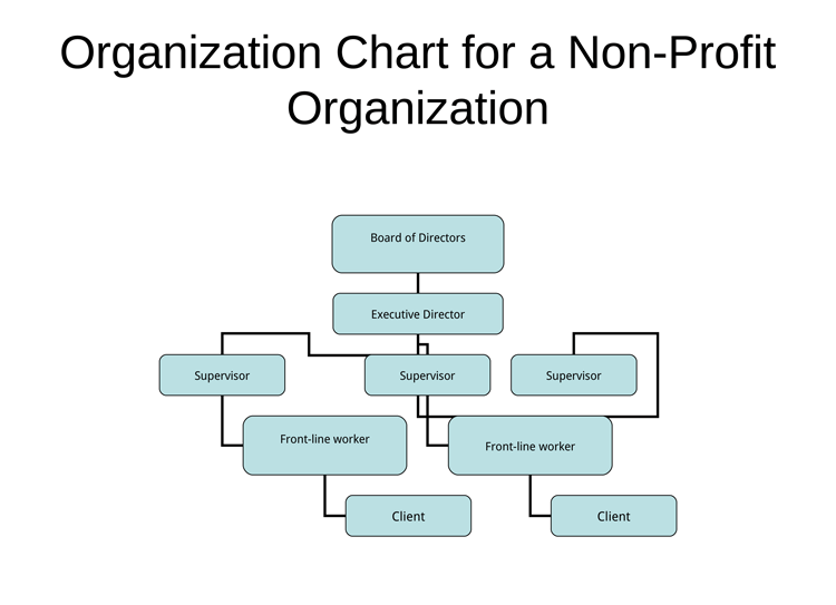 nonprofit organizational chart 5 best samples