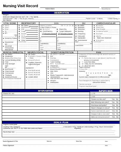 Nursing Visit Record Template