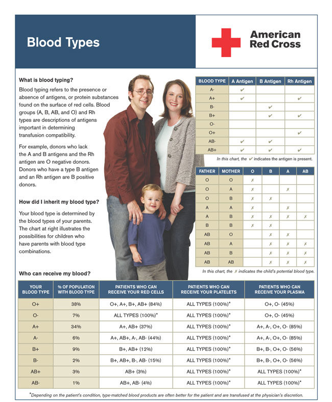 Parents Blood Type Chart