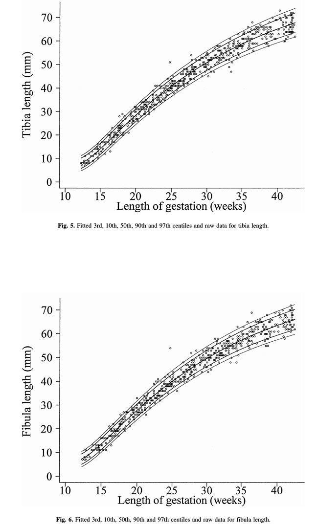 Unborn Baby Limb bone Chart
