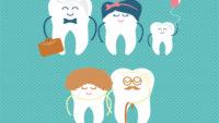 Printable Baby Teeth Chart Templates