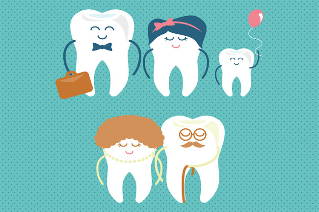 baby-teeth-Chart