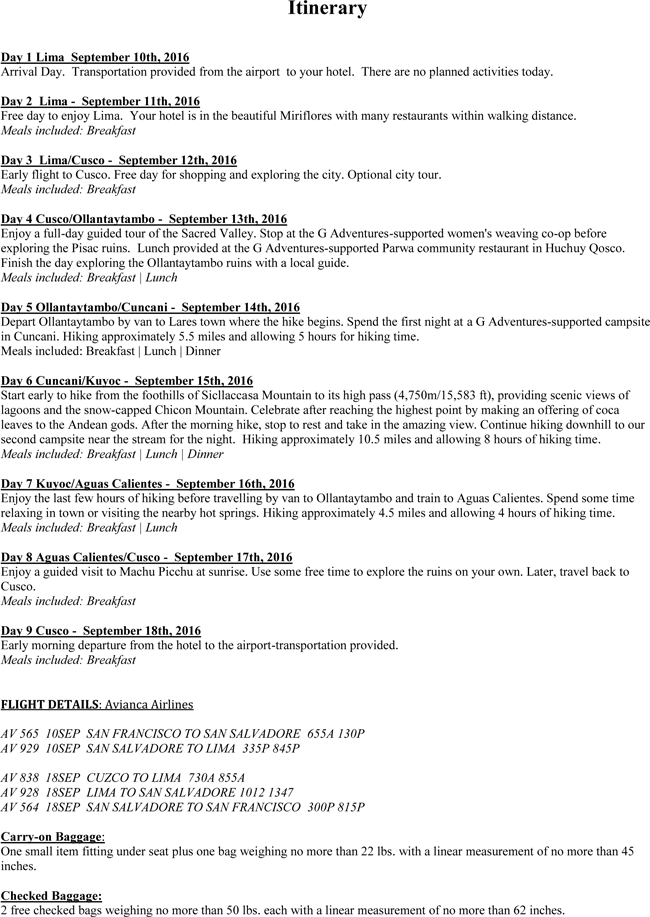 Download Flight Itinerary Templates