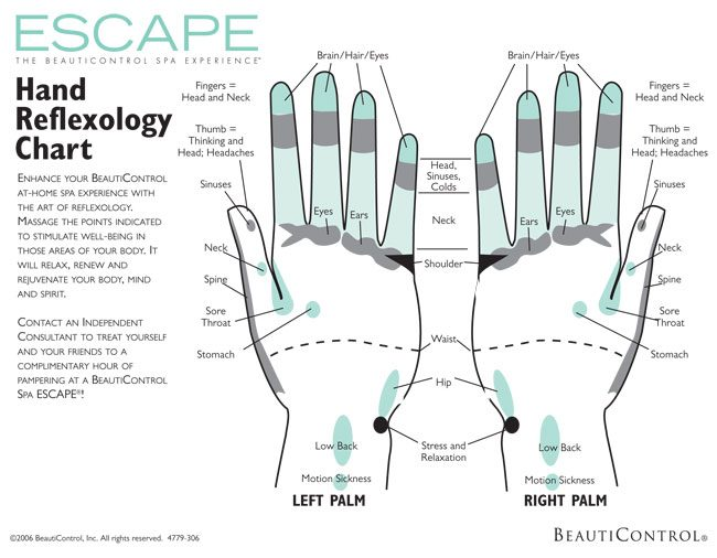 photo about Printable Reflexology Foot Chart known as Printable Reflexology Charts - Obtain Absolutely free in just PDF