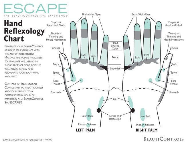 graphic regarding Printable Reflexology Foot Chart called Printable Reflexology Charts - Obtain No cost inside PDF